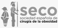 La Sociedad española de Cirugía de la Obesidad y Enfermedades Metabólicas